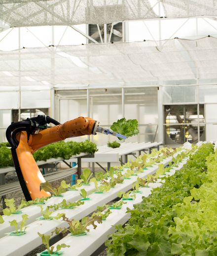 AppHarvest רוצה לגדל ירקות באמצעות מי גשם והמשקיעים אוהבים את זה