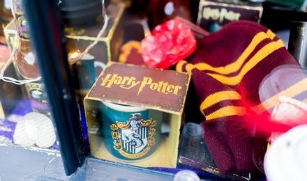 חנות הארי פוטר בניו יורק תפתח את שעריה ללקוחות בחודש יוני