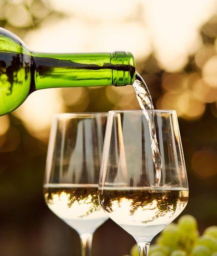 מיוחד לחג: יינות לבנים ורוזה לארוחת שבועות חגיגית