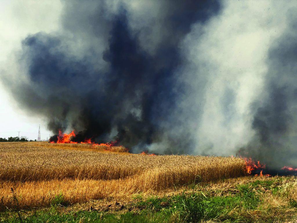 שריפות שנגרמו מבלוני תבערה | צילום: Shutterstock