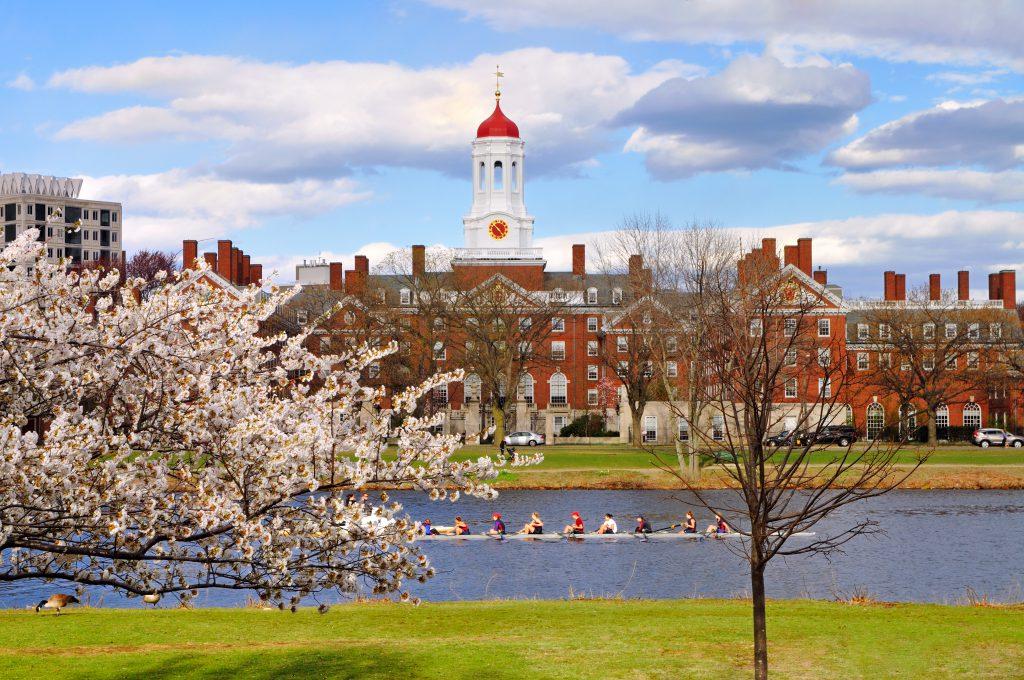 אוניברסיטת הרווארד   צילום: Shutterstock