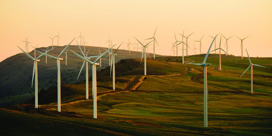 טורבינות רוח בארצות הברית. צילום: American Public Power Association, unsplash