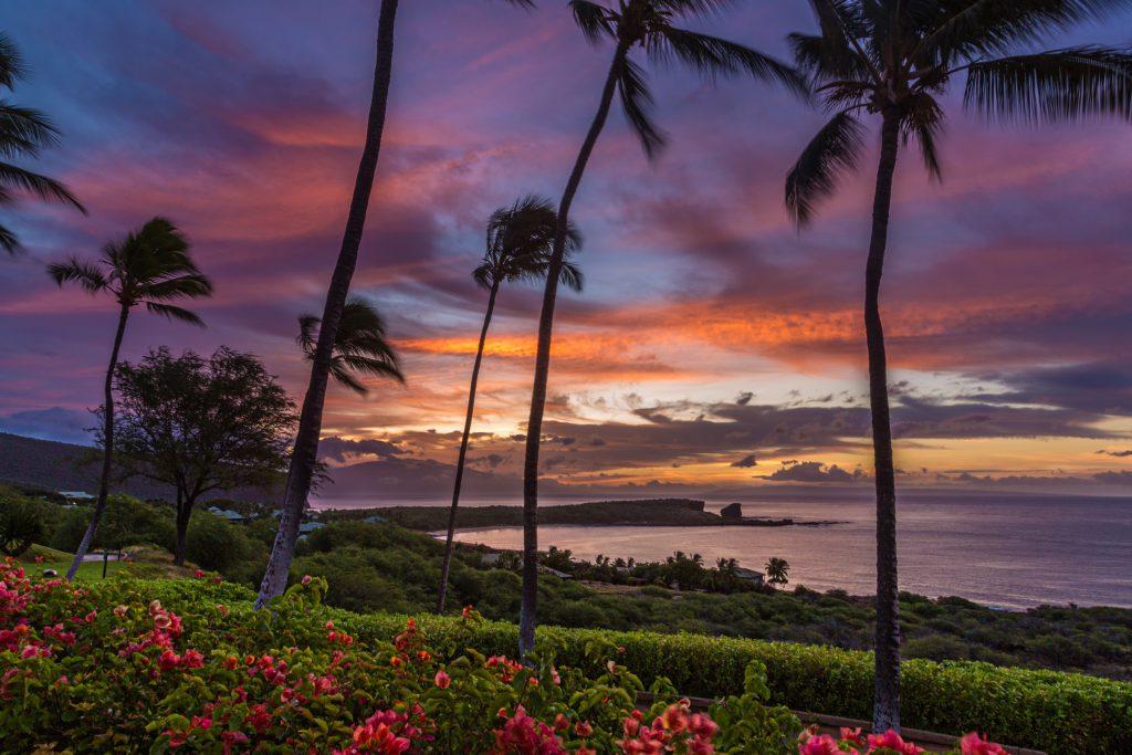 אחד מחופי האי לאנאי בהוואי. 'צלחת פטרי' של ניסויי קיימות   צילום: Shutterstock
