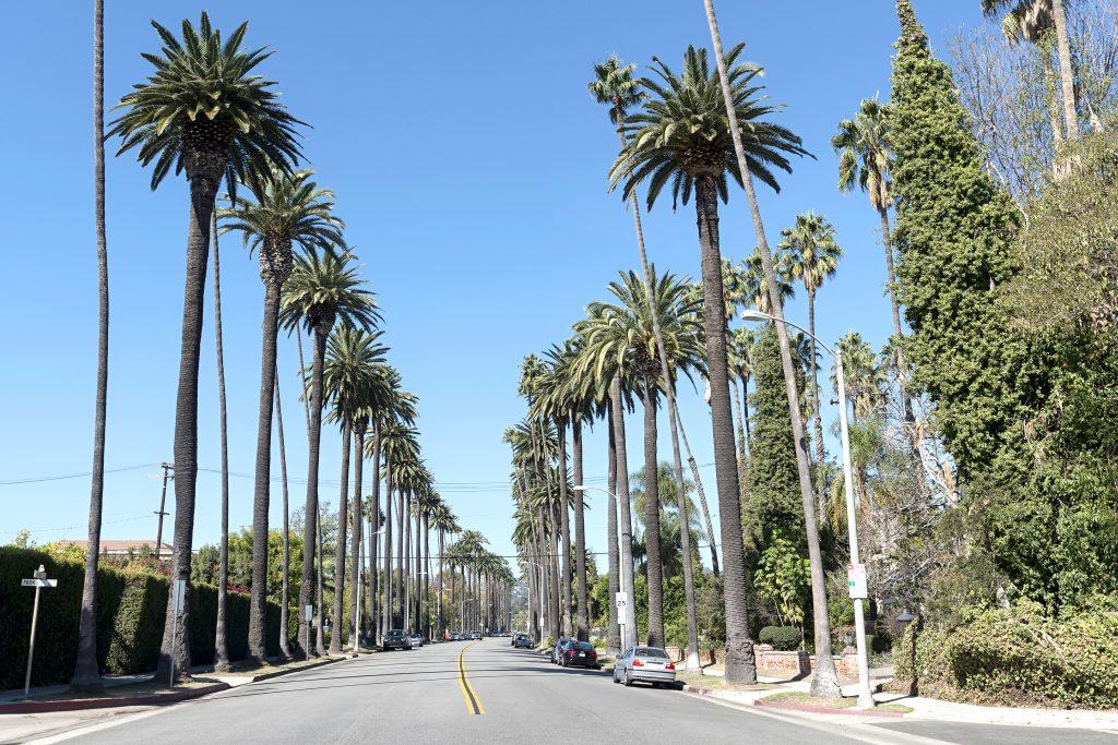 שכונת בוורלי הילס בקליפורניה. המגרש הביתי של ג'יימס   צילום: Shutterstock