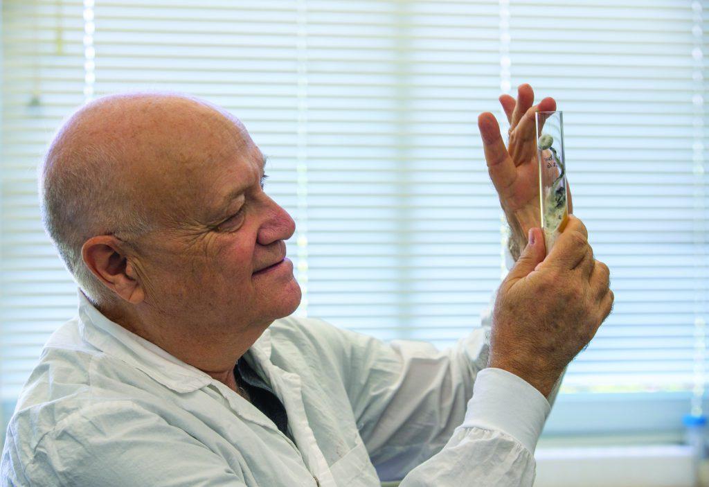 """ד""""ר הולצר. """"החומר שלנו תמיד יצא אותו הדבר, ובאיכות גבוהה""""   צילום: יוסי אלוני"""