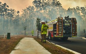 שריפות באוסטרליה   צילום: Shutterstock
