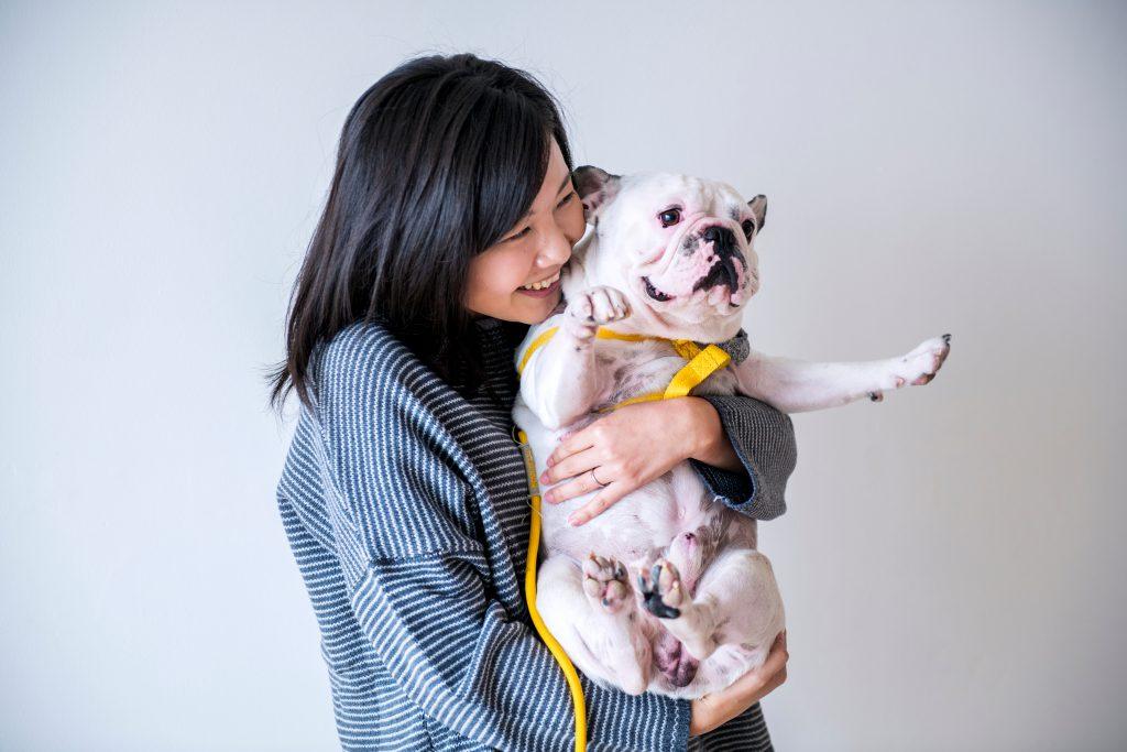 מהפך תפיסתי. עליית שוק חיות המחמד בסין   צילום: Shutterstock